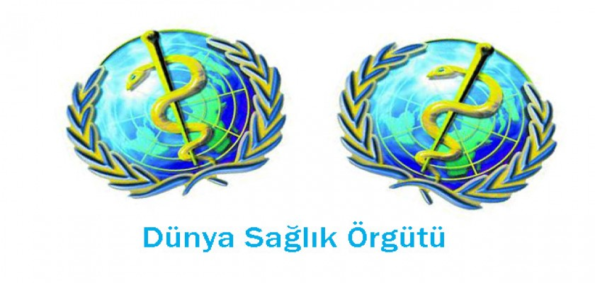 Dünya Sağlık Örgütünden Kaza Önlemleri